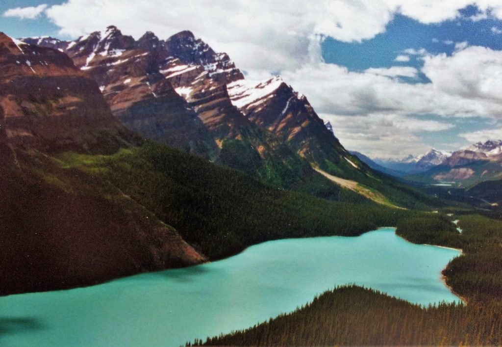 Peyto Lake, off Icefields Parkway