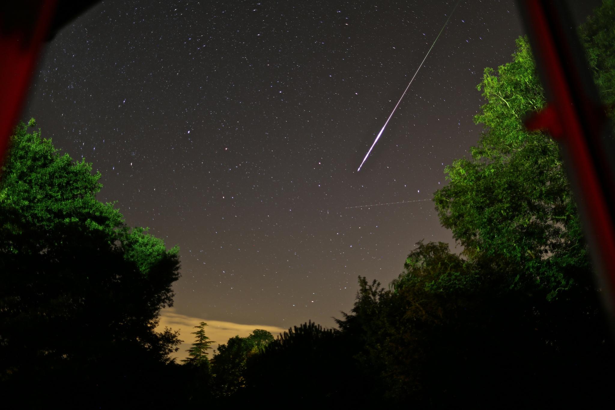 Perseid Meteor, courtesy of Kathryn Alberts