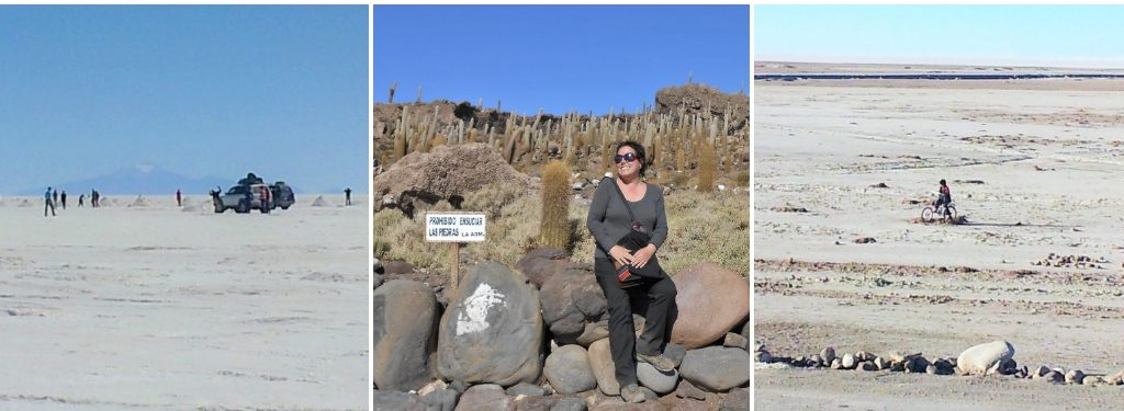 Desolate landscapes and the rocky oasis of Incahuasi